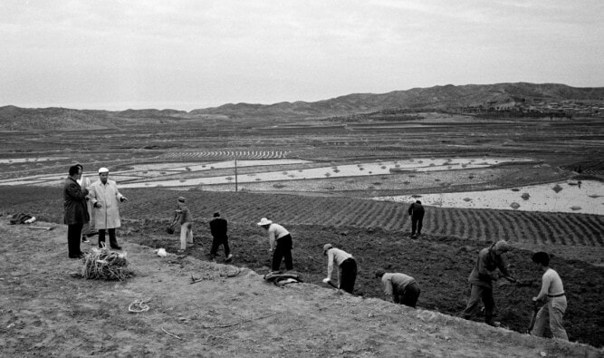 Increasing Agricultural Production, 01 April 1964, Republic of Korea