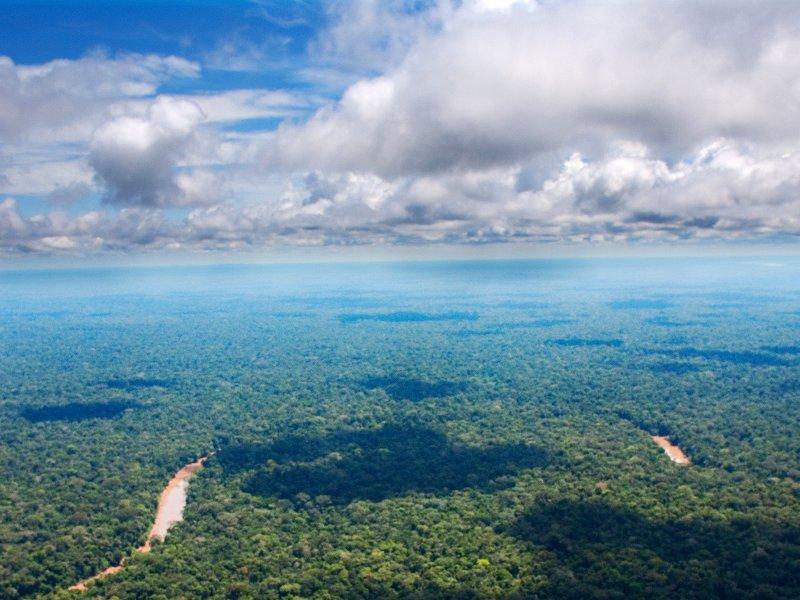 stop-the-destruction-of-the-ecuadorian-amazon