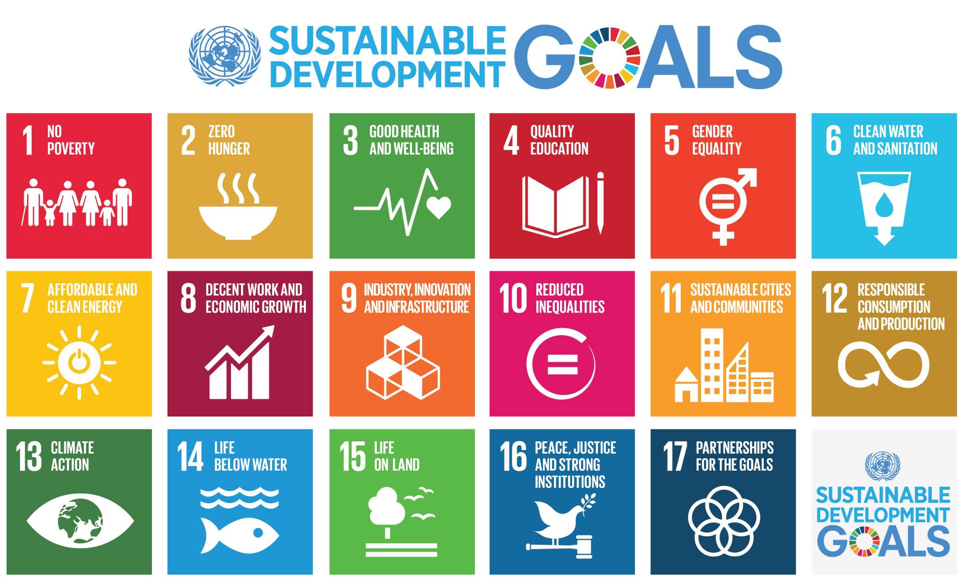 17 UN Sustainable Development Goals