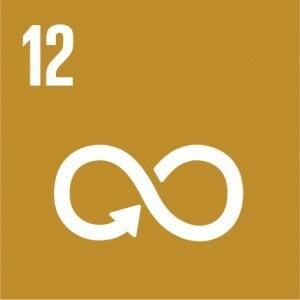 E_SDG_Icons_NoText-12