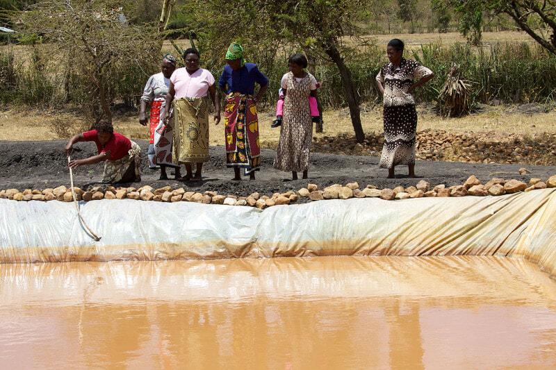 Small scale aquaculture: A 22-member women's agriculture group in Machakos, Kenya runs a fish pond enterprise. (source: Wikimedia)