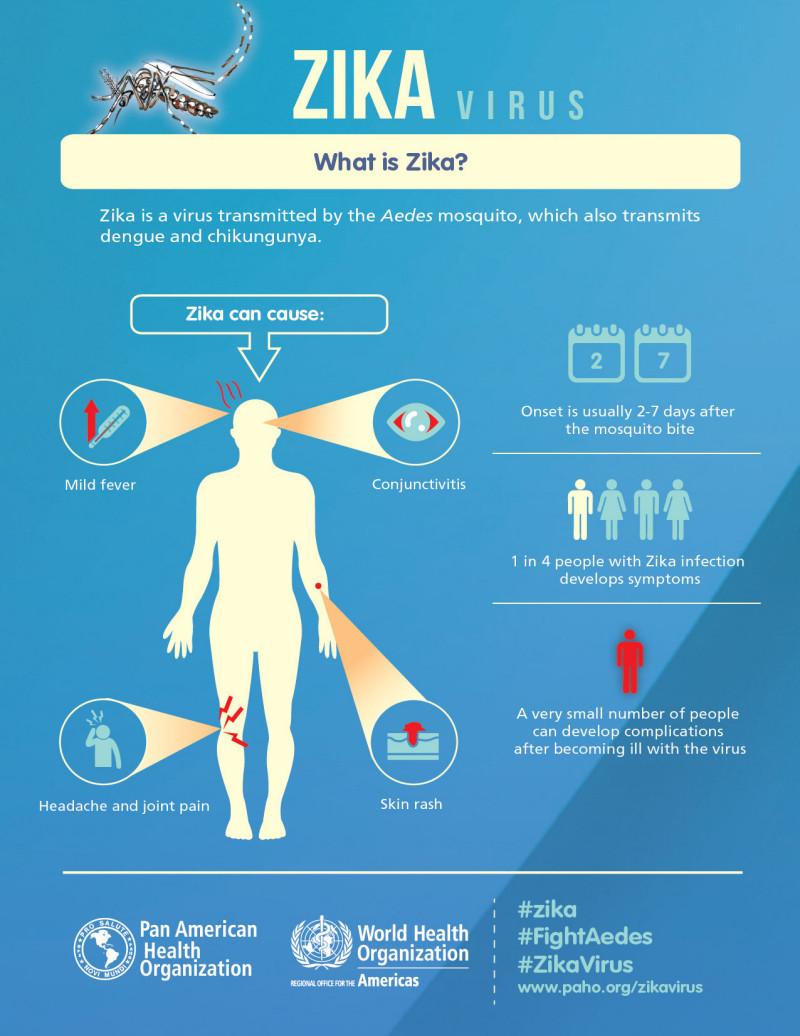 Zika Inforgraphic