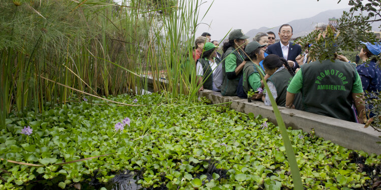 """Secretary-General Ban Ki-moon visits a Climate change-related event: """"Afforestation of degraded and vulnerable areas in Lima"""" in the district of El Agustino."""
