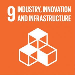 SDG9Icon