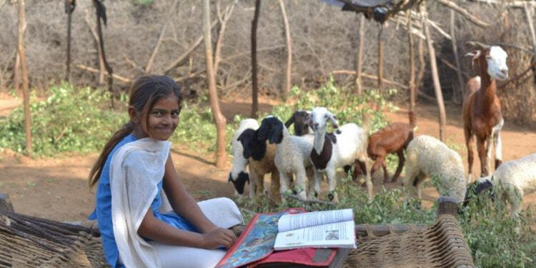 educate-girls-safeena-husain-sdg-4