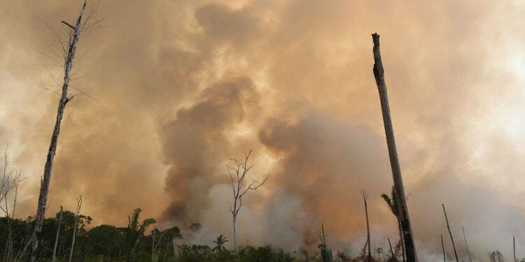 Raging Fire in the Porto Velho region at Rondonia state, Brazil Photo Credit: WWF