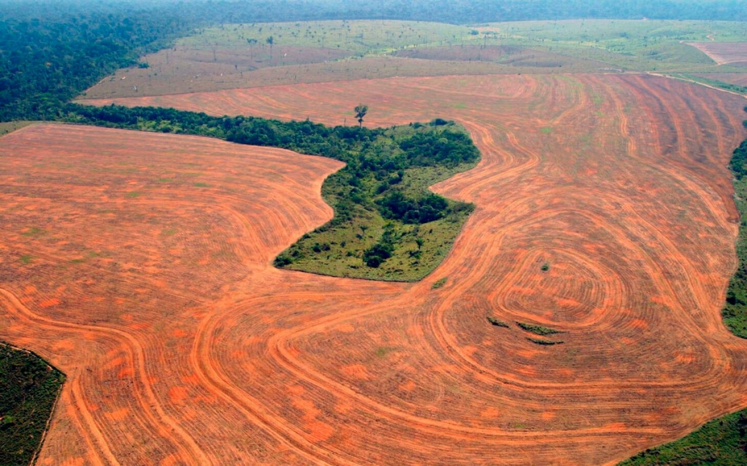A depiction of the deforestation occurring in the Amazon
