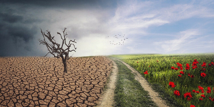 In the Photo: Effect of Climate change,Photo Credit: Enriquelopezgarre/PixieBay