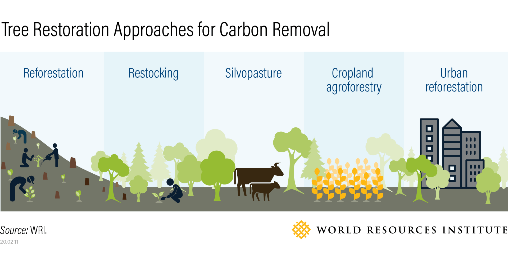 Infographic showing carbon removal approaches