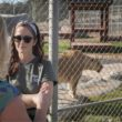 Minka Kelly - IFAW Ambassador, American Actress and Animal Advocate