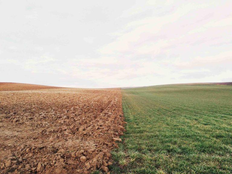 Bare Soil and Tillage