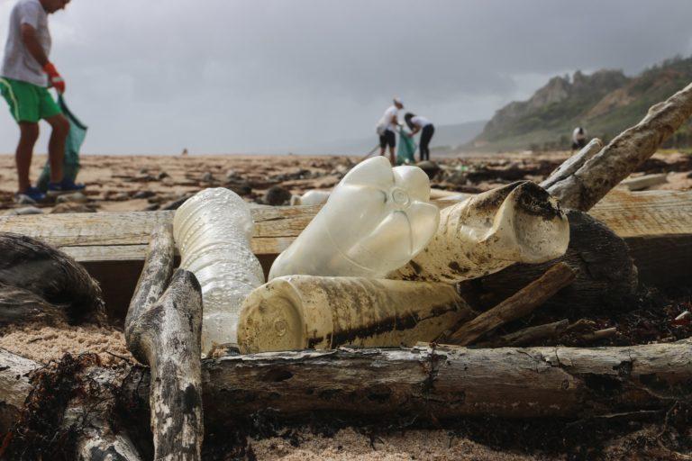 Ocean plastic pollution sustainable development