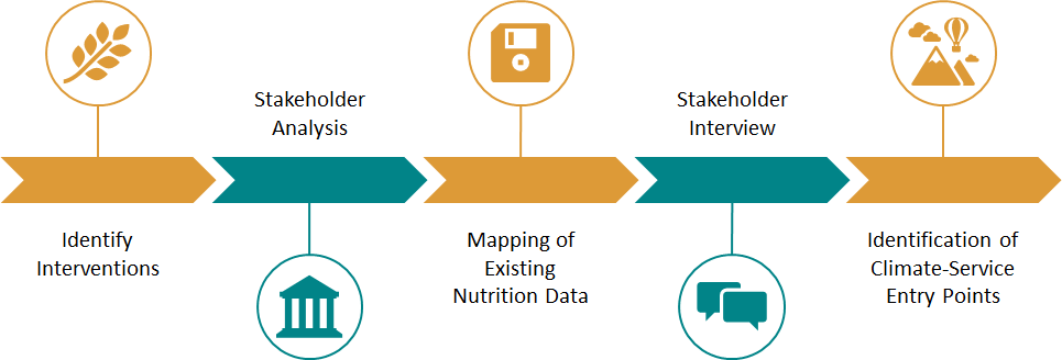 Research methodology undertaken for nutrition landscape mapping. Source: Pranav Singh (ACToday).