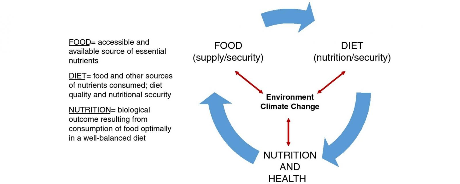 A figure demonstrating the intersection between nutrition,food, diet, and environmental change. Source: Raiten & Aimone, 2017