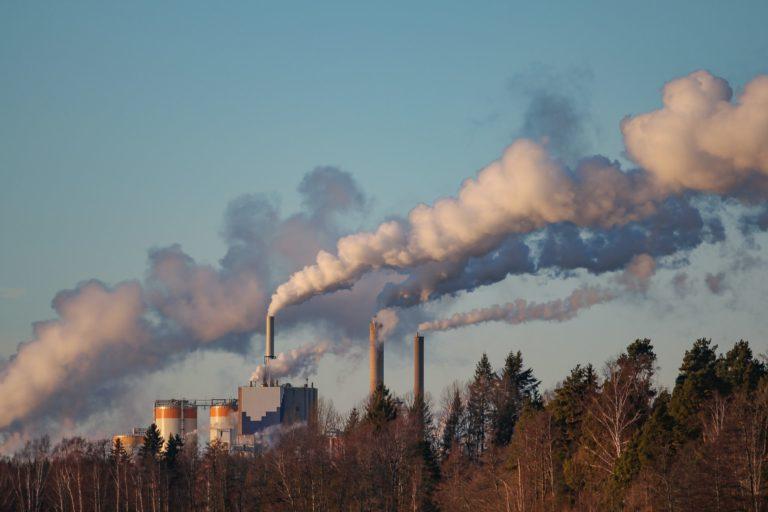 Swedish power plant energy charter treaty