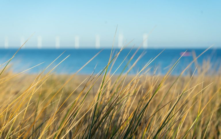 Offshore windmills providing clean energy