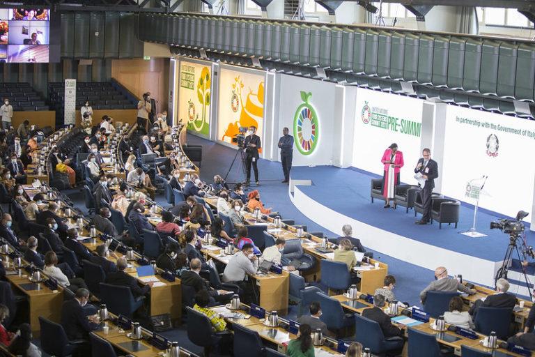 UNFSS pre-Summit