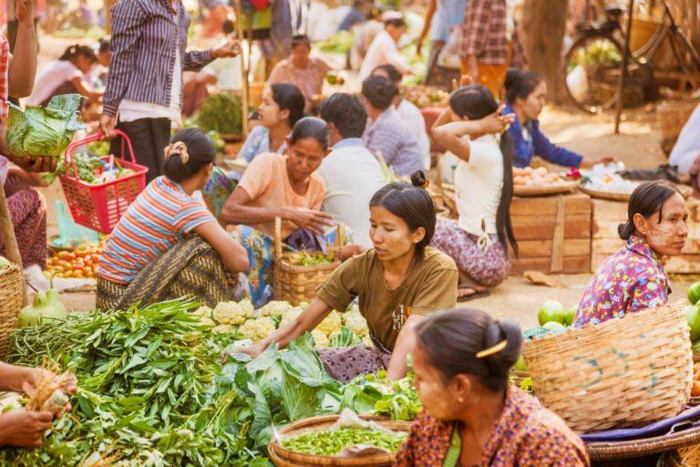 Hunger, Food Crisis