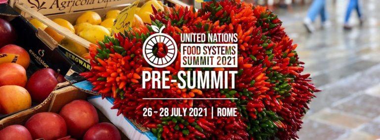 UNFSS pre-summit banner