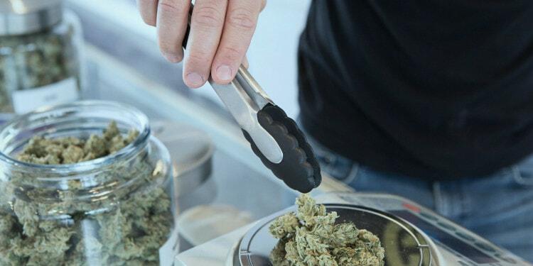 recreational marijuana cannabis